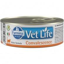 Farmina VetLife NATURAL DIET CAT CONVALESCENCE Корм для кошек в период восстановления 85г